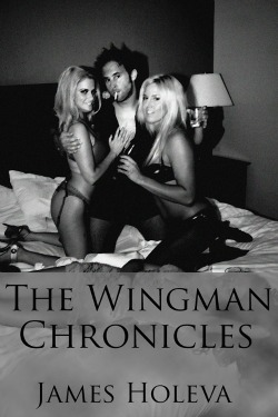 The Wingman Chronicles by James Holeva