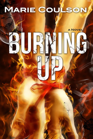 Burning Up Book Cover