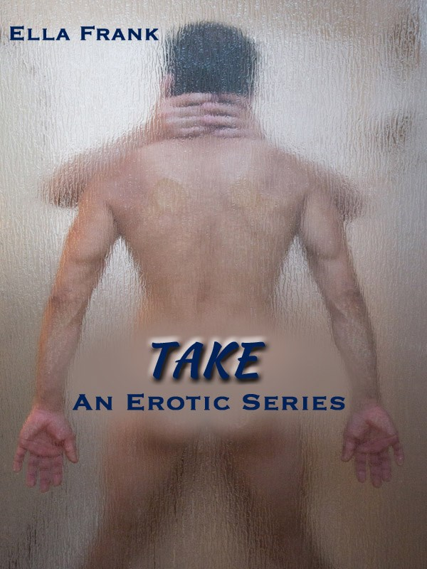 Take Book Cover